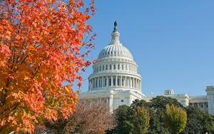 Save 50% on Washington DC