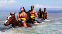 Best of the West Jamaica Island Experience