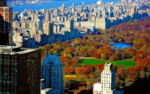 Save 40% on New York City