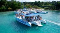 Jamaica Dunn's River Falls Party Cruise with Snorkeling