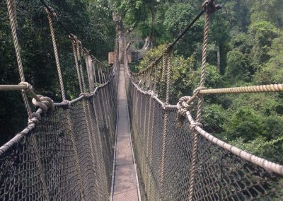 Have a great adventure on the Canopy Walk at Kakum National Park